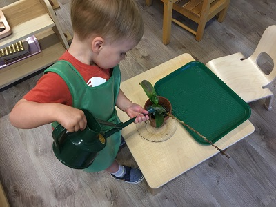 Learning Independence at Spark Montessori